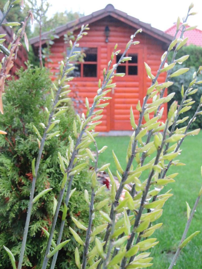 A kert része, a kert dísze
